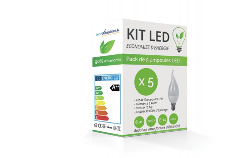 Kit LED Flamme E14 6W