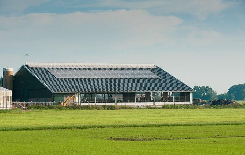 entreprises-batiments-agricoles-panneaux-solaires