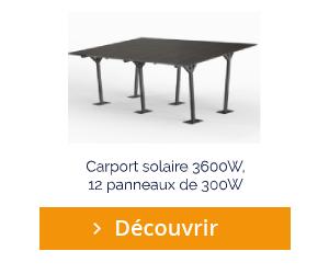 Découvrir le carport solaire 3600W 12 panneaux de 300W