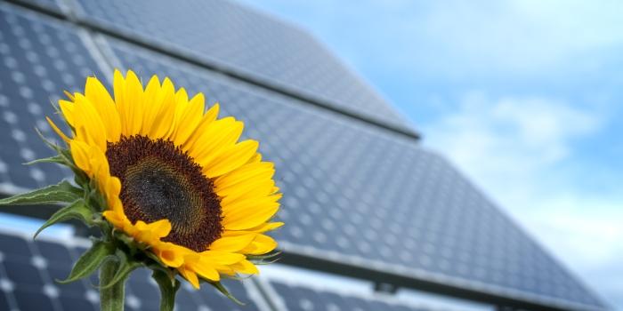 Qu'est-ce qu'un tracker solaire ?