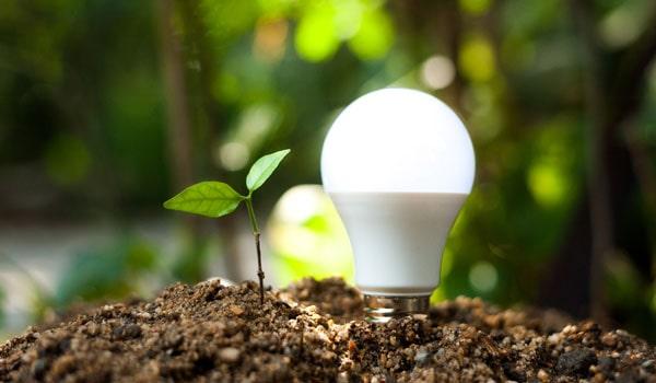 Le solaire est une énergie renouvelable incontournable et rentable